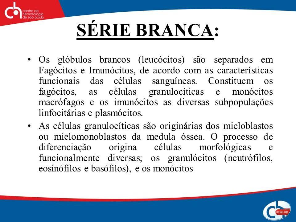 SÉRIE BRANCA:
