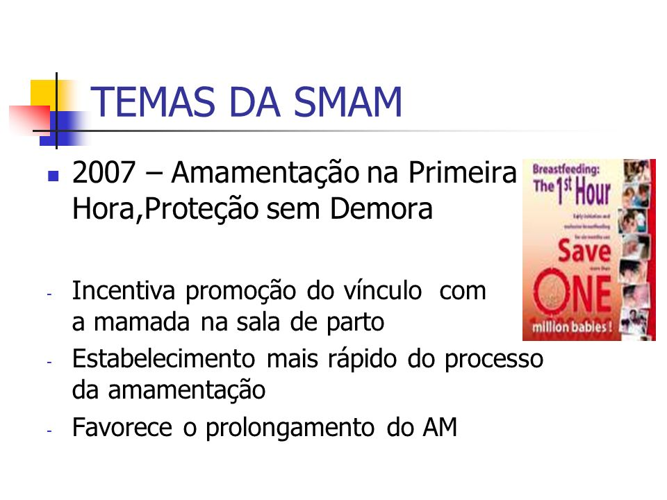 TEMAS DA SMAM 2007 – Amamentação na Primeira Hora,Proteção sem Demora