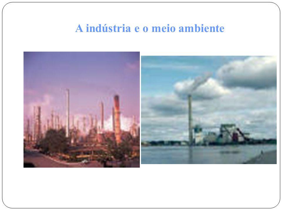 A indústria e o meio ambiente