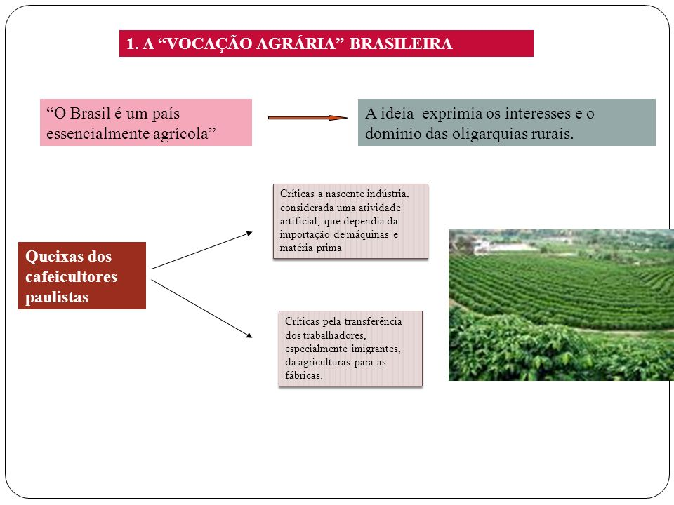 1. A VOCAÇÃO AGRÁRIA BRASILEIRA