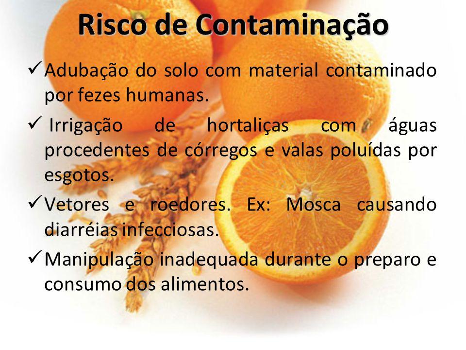 Risco de Contaminação Adubação do solo com material contaminado por fezes humanas.