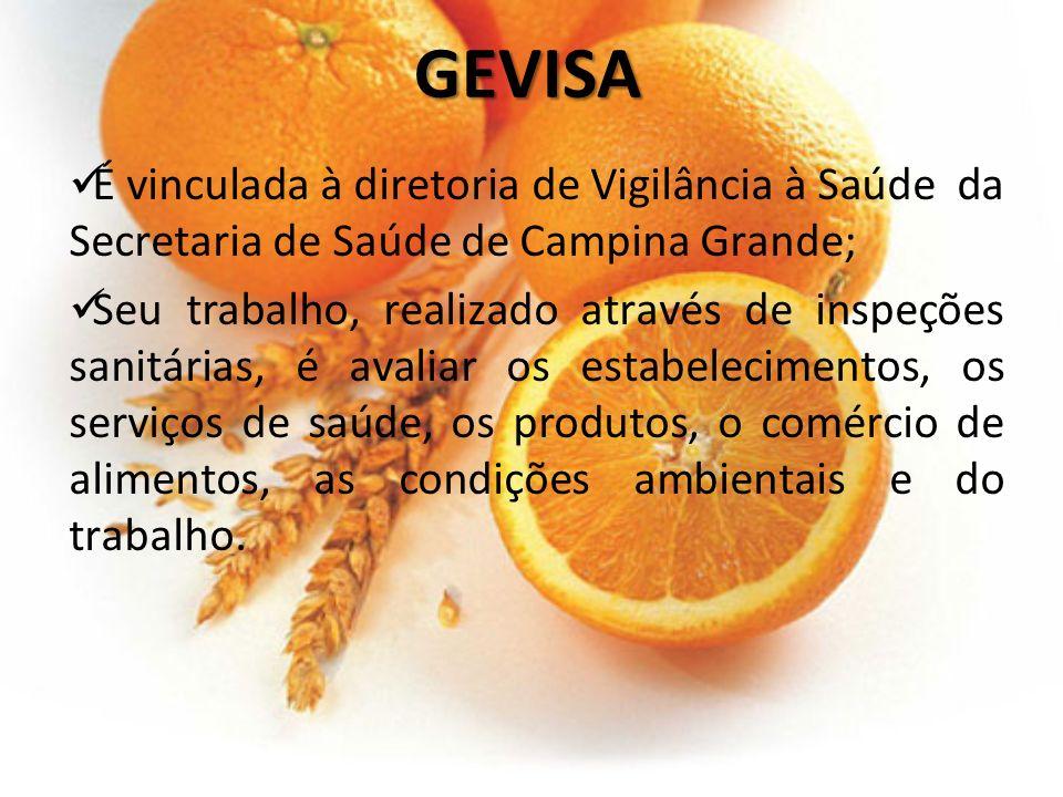 GEVISA É vinculada à diretoria de Vigilância à Saúde da Secretaria de Saúde de Campina Grande;