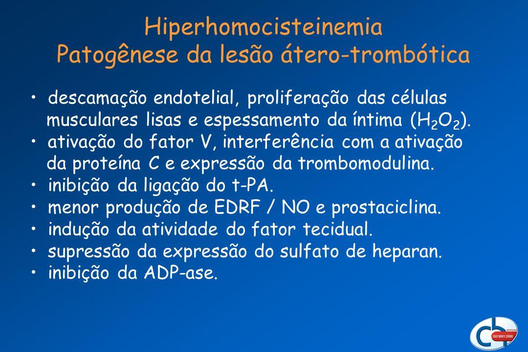 Hiperhomocisteinemia Patogênese da lesão átero-trombótica