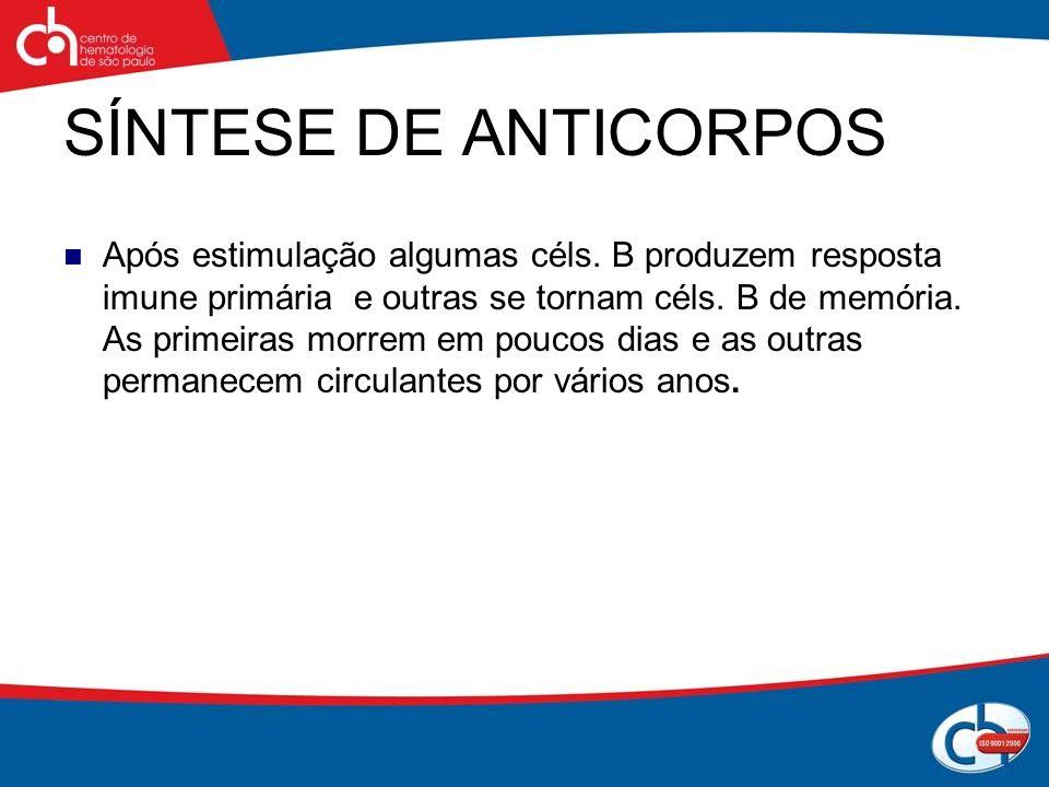 SÍNTESE DE ANTICORPOS