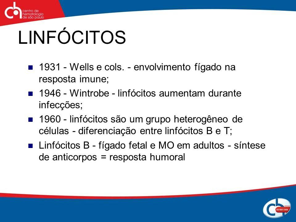 LINFÓCITOS 1931 - Wells e cols. - envolvimento fígado na resposta imune; 1946 - Wintrobe - linfócitos aumentam durante infecções;