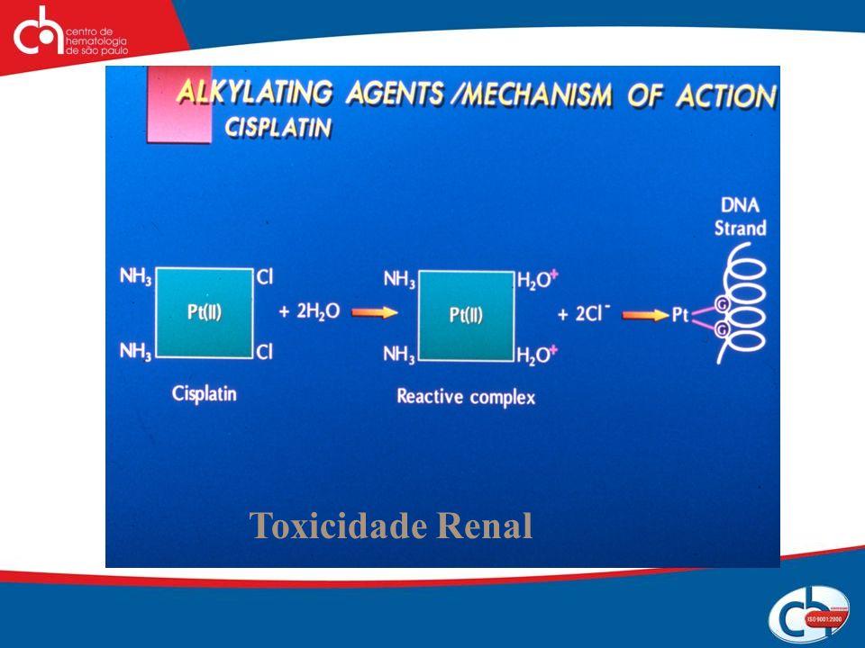 Toxicidade Renal