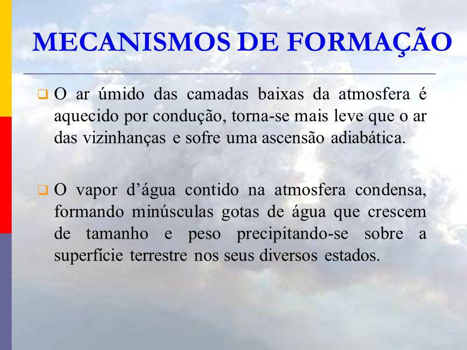 MECANISMOS DE FORMAÇÃO