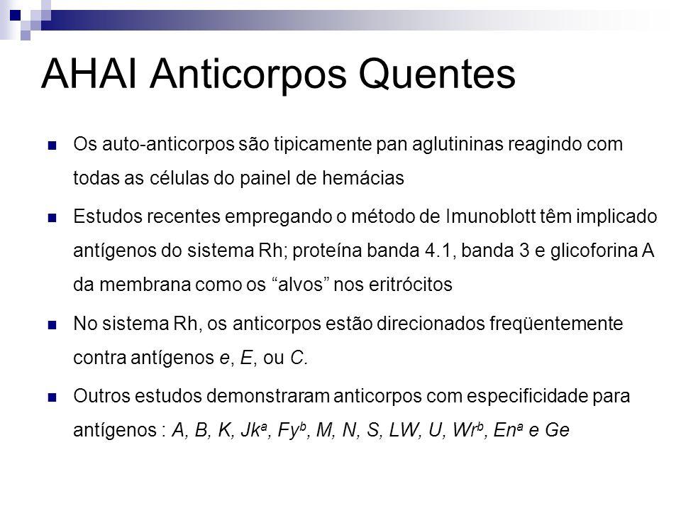 AHAI Anticorpos Quentes