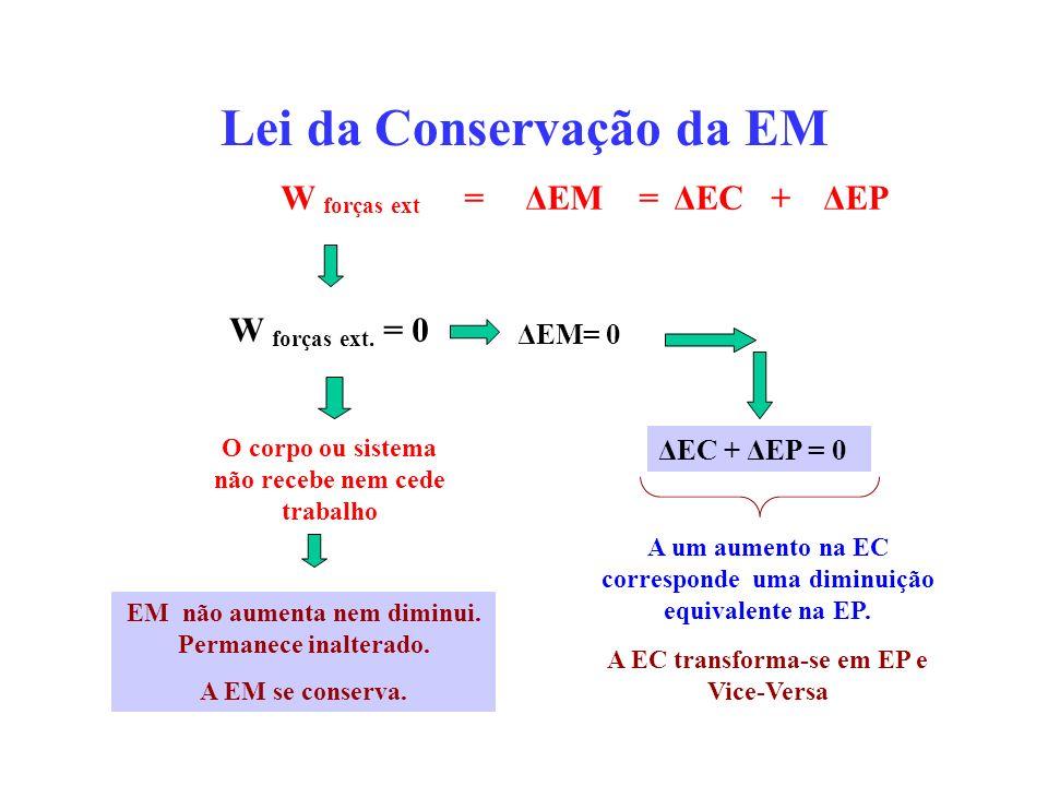 Lei da Conservação da EM