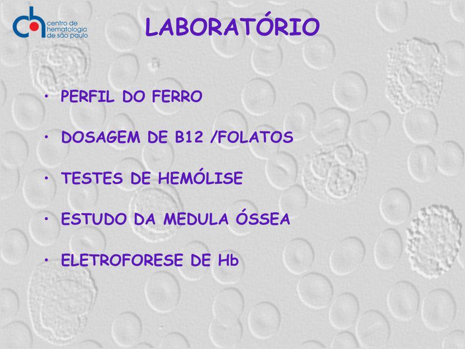 LABORATÓRIO PERFIL DO FERRO DOSAGEM DE B12 /FOLATOS TESTES DE HEMÓLISE