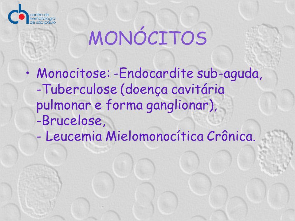 MONÓCITOS