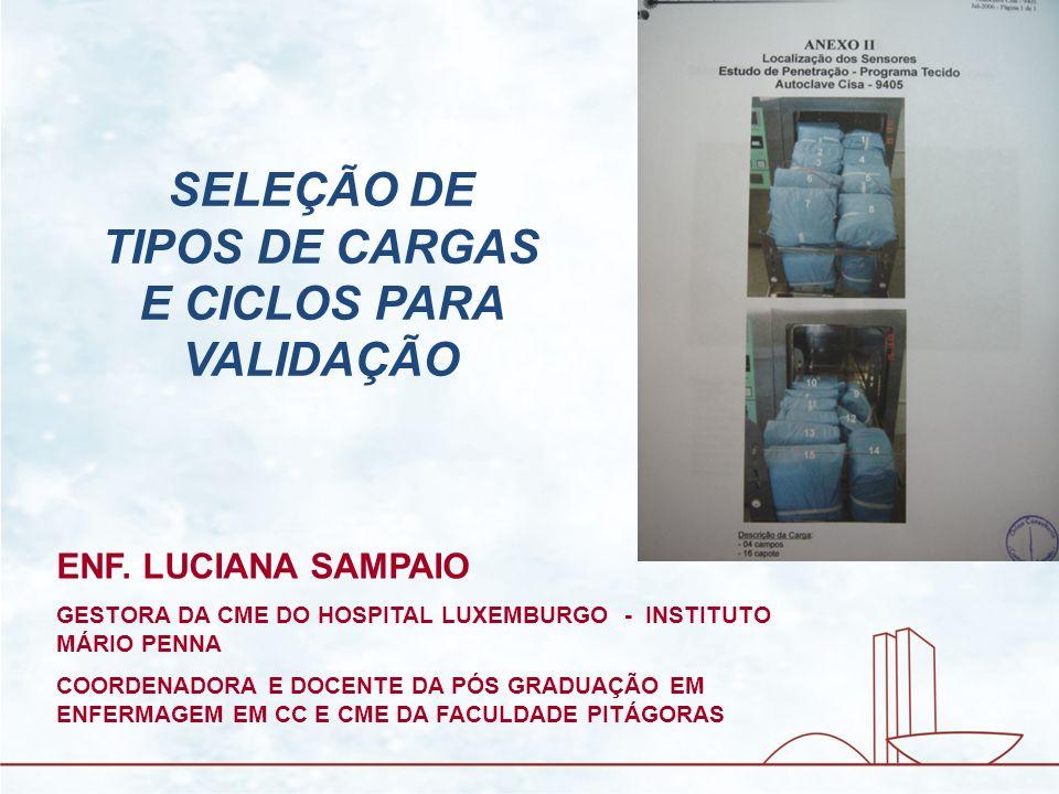 SELEÇÃO DE TIPOS DE CARGAS E CICLOS PARA VALIDAÇÃO