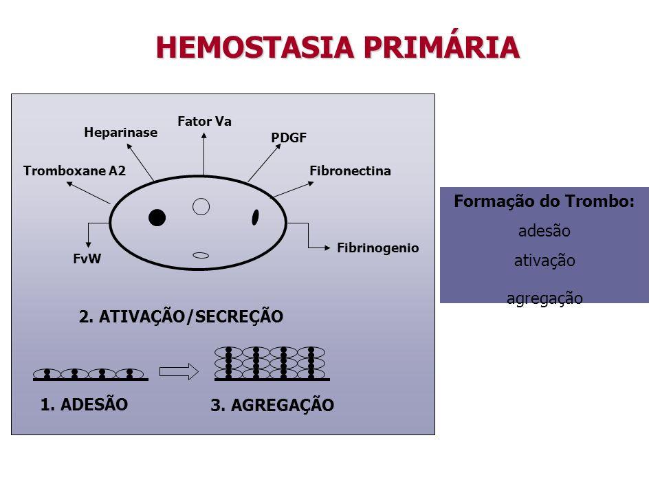 HEMOSTASIA PRIMÁRIA Formação do Trombo: adesão ativação agregação