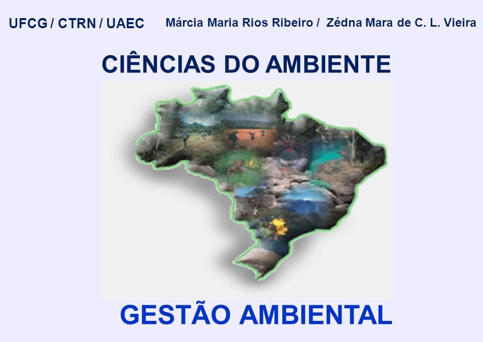 Márcia Maria Rios Ribeiro / Zédna Mara de C. L. Vieira