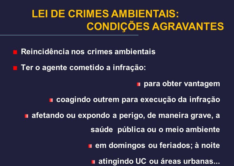 LEI DE CRIMES AMBIENTAIS: CONDIÇÕES AGRAVANTES