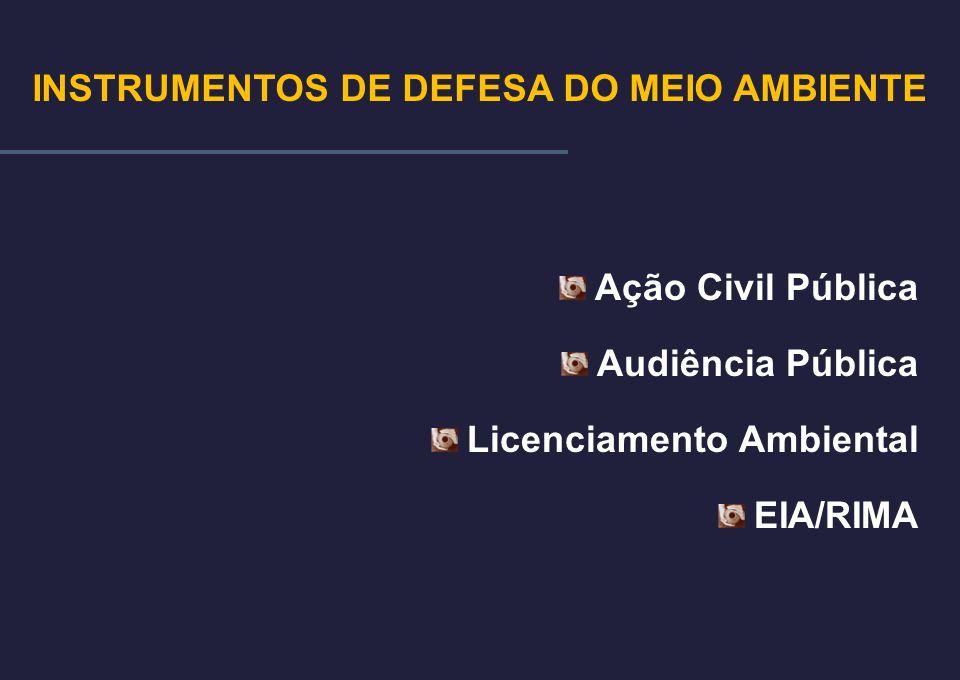 INSTRUMENTOS DE DEFESA DO MEIO AMBIENTE