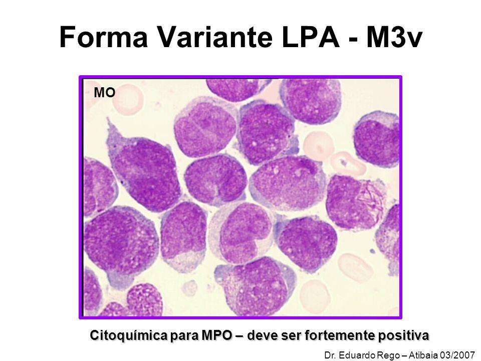 Forma Variante LPA - M3v MO