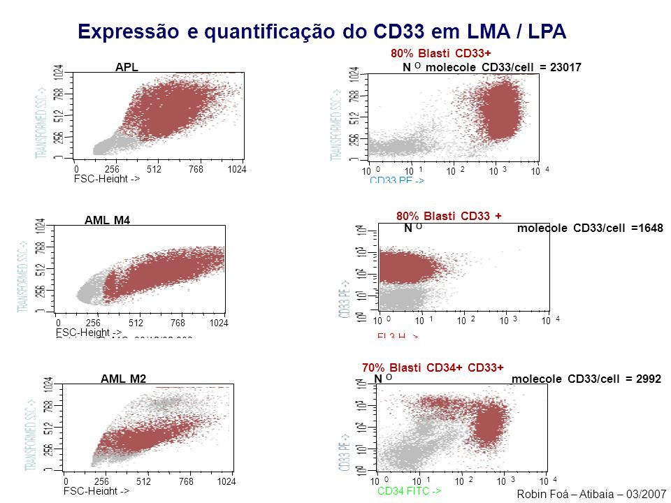 Expressão e quantificação do CD33 em LMA / LPA