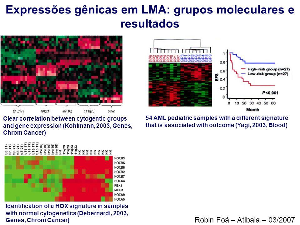 Expressões gênicas em LMA: grupos moleculares e resultados