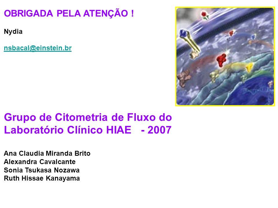 Grupo de Citometria de Fluxo do Laboratório Clínico HIAE - 2007