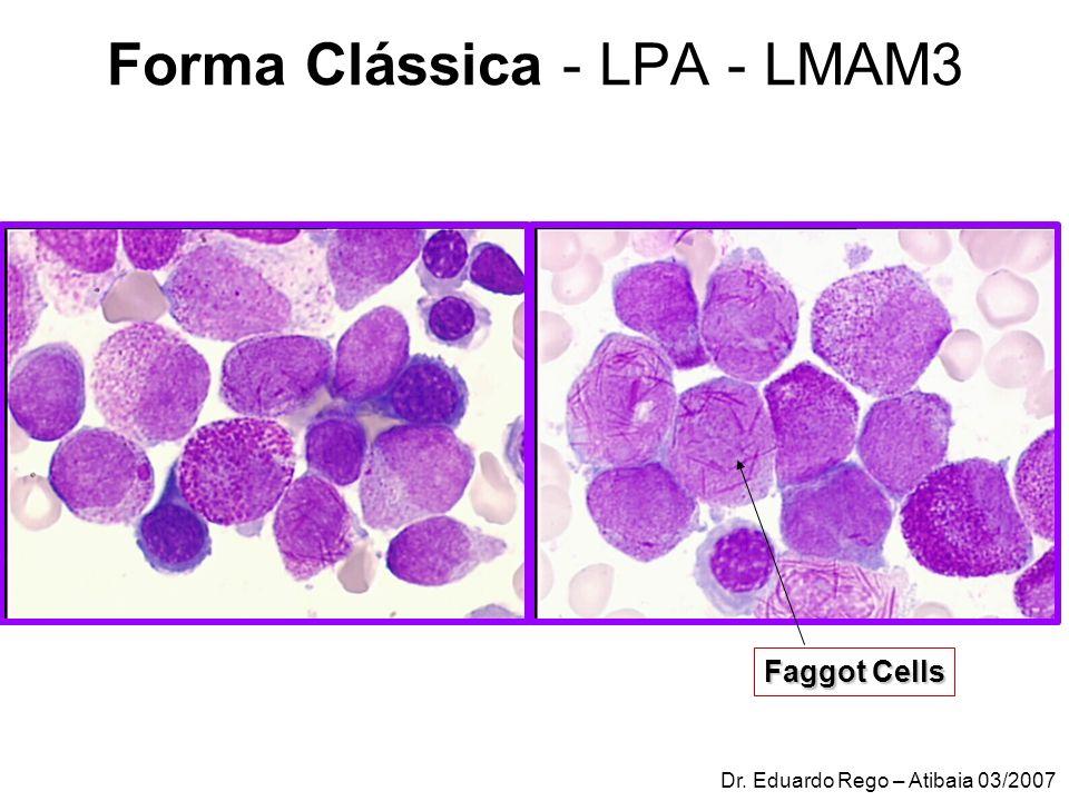 Forma Clássica - LPA - LMAM3