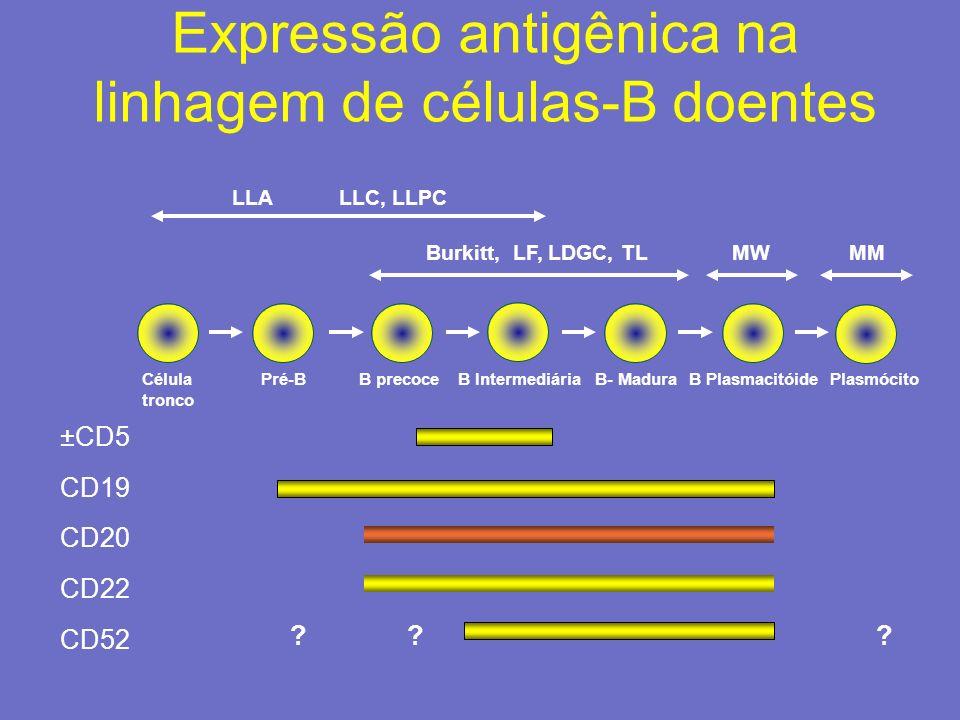 Expressão antigênica na linhagem de células-B doentes