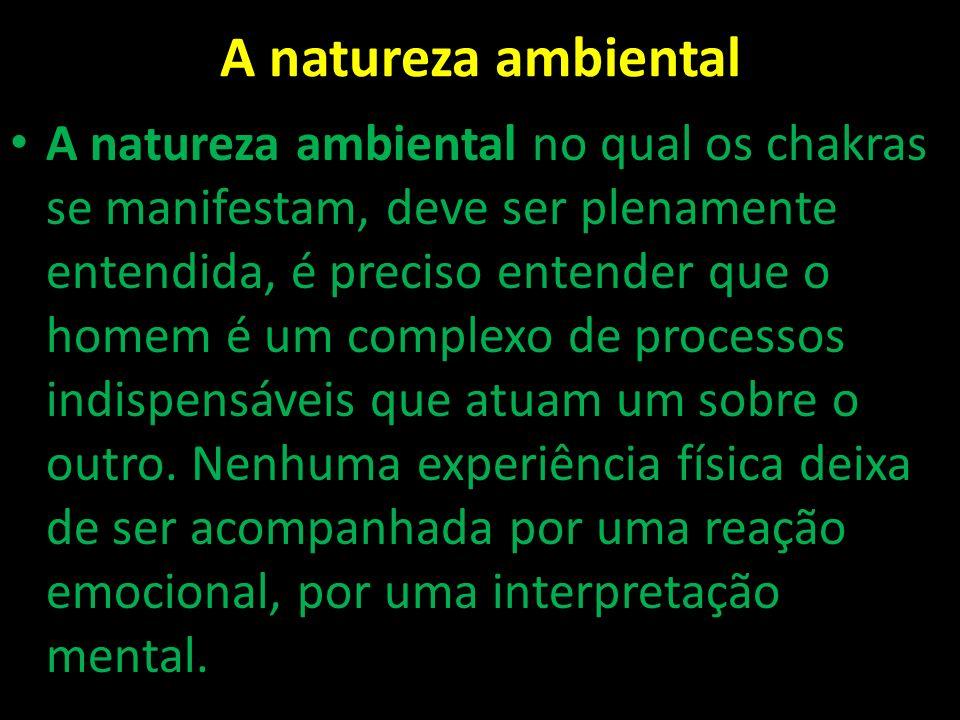 A natureza ambiental