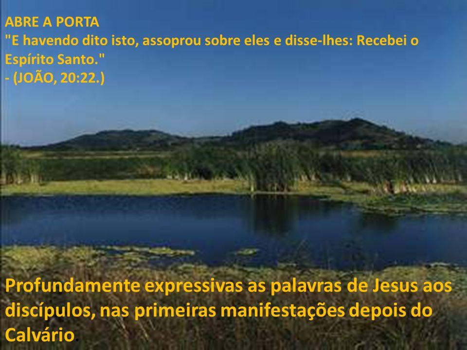 ABRE A PORTA E havendo dito isto, assoprou sobre eles e disse-lhes: Recebei o Espírito Santo. - (JOÃO, 20:22.)