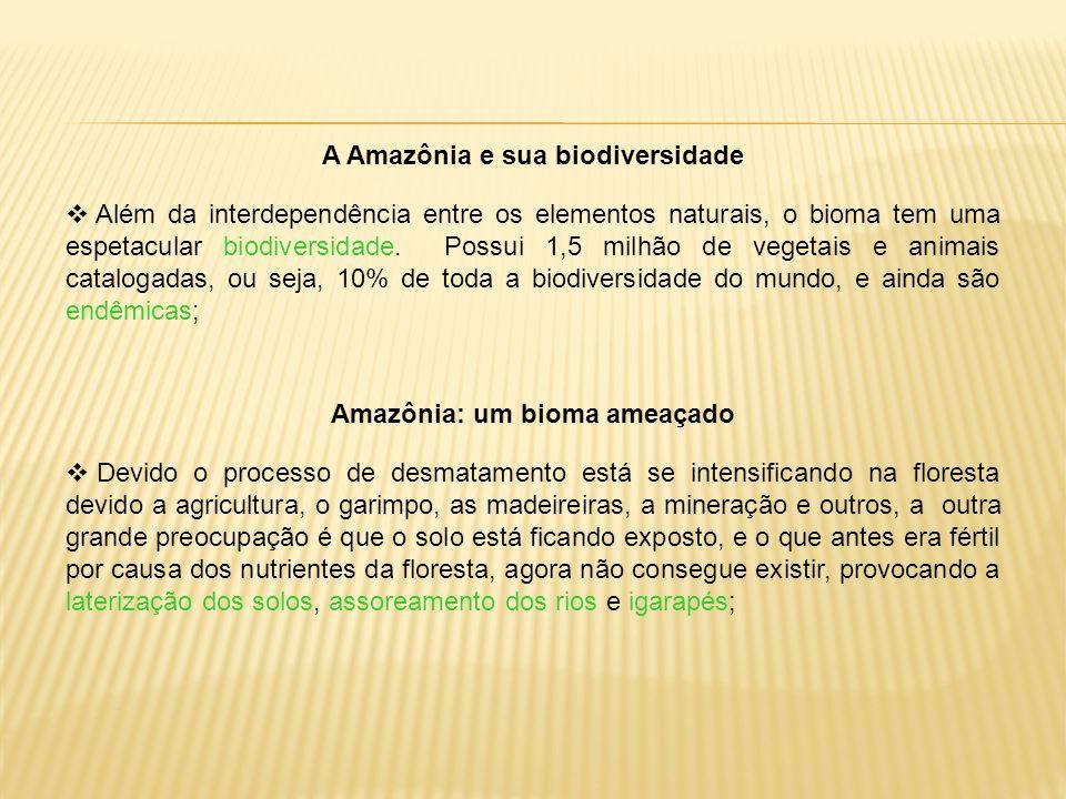 A Amazônia e sua biodiversidade Amazônia: um bioma ameaçado