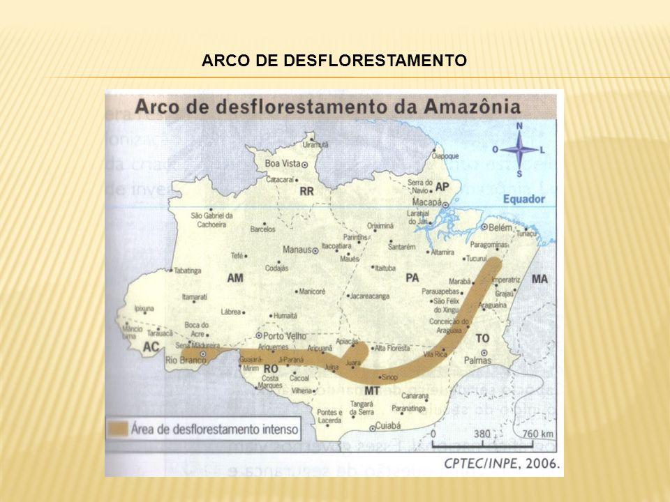 ARCO DE DESFLORESTAMENTO