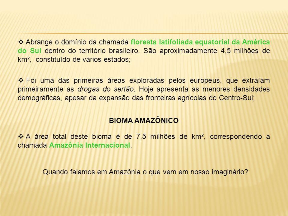 Quando falamos em Amazônia o que vem em nosso imaginário