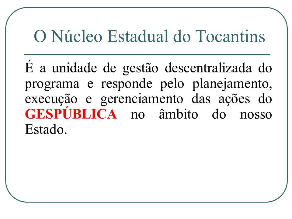 O Núcleo Estadual do Tocantins