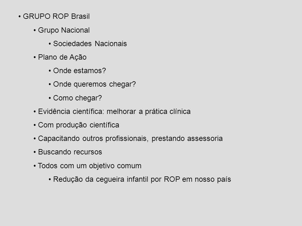 GRUPO ROP Brasil Grupo Nacional. Sociedades Nacionais. Plano de Ação. Onde estamos Onde queremos chegar