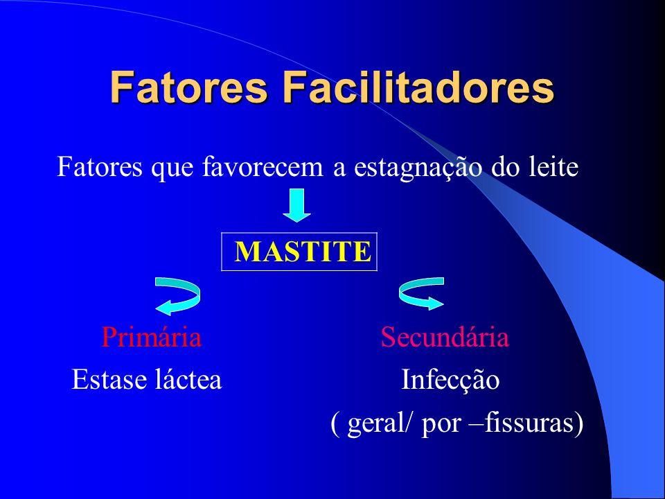 Fatores Facilitadores