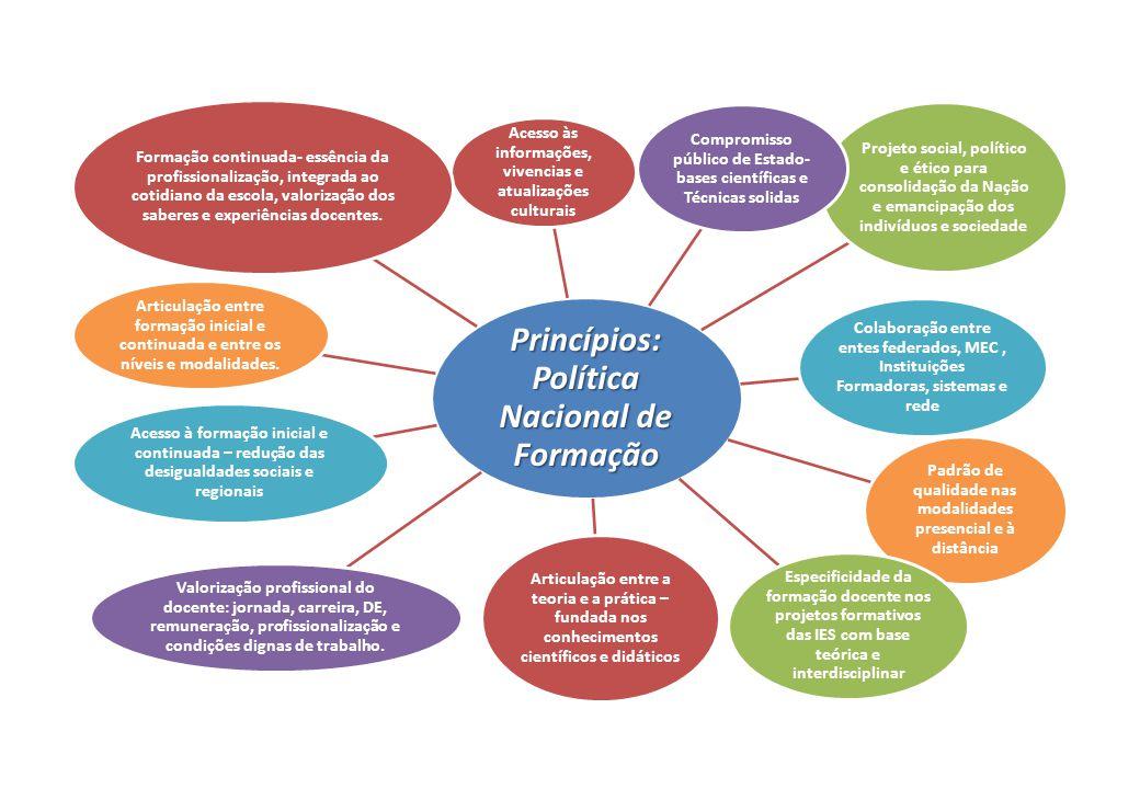 Princípios: Política Nacional de Formação
