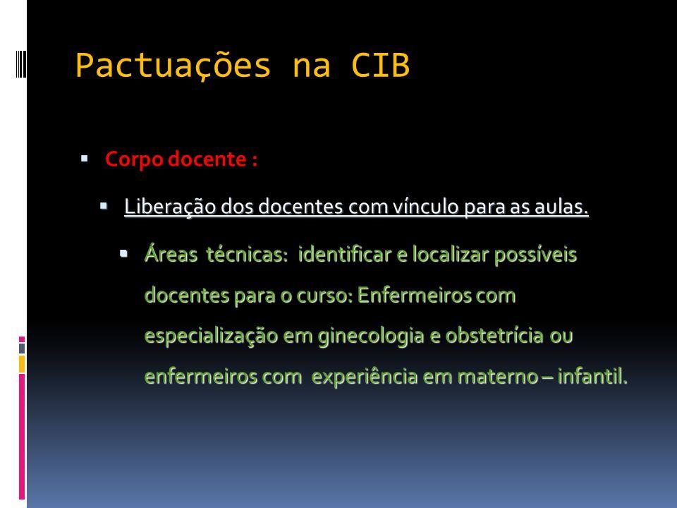 Pactuações na CIB Corpo docente :