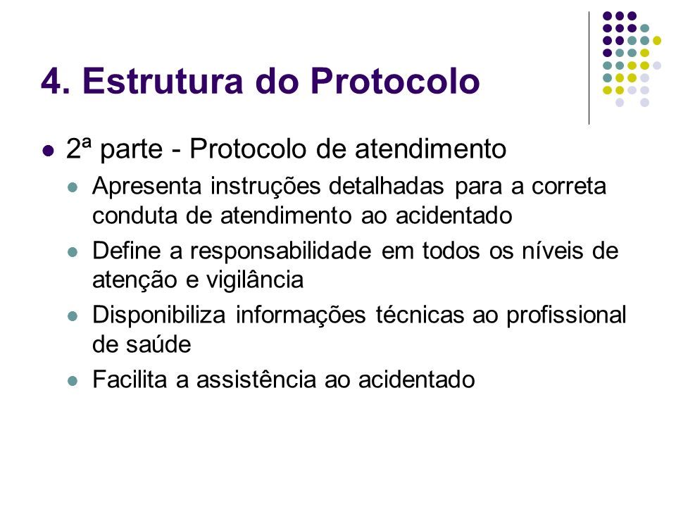 4. Estrutura do Protocolo