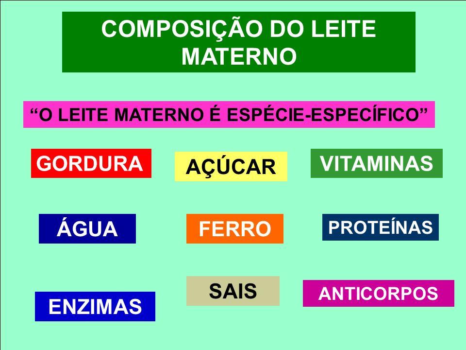 COMPOSIÇÃO DO LEITE MATERNO O LEITE MATERNO É ESPÉCIE-ESPECÍFICO