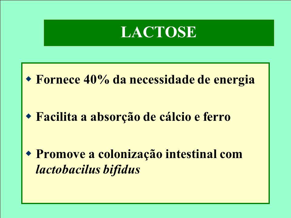 LACTOSE Fornece 40% da necessidade de energia
