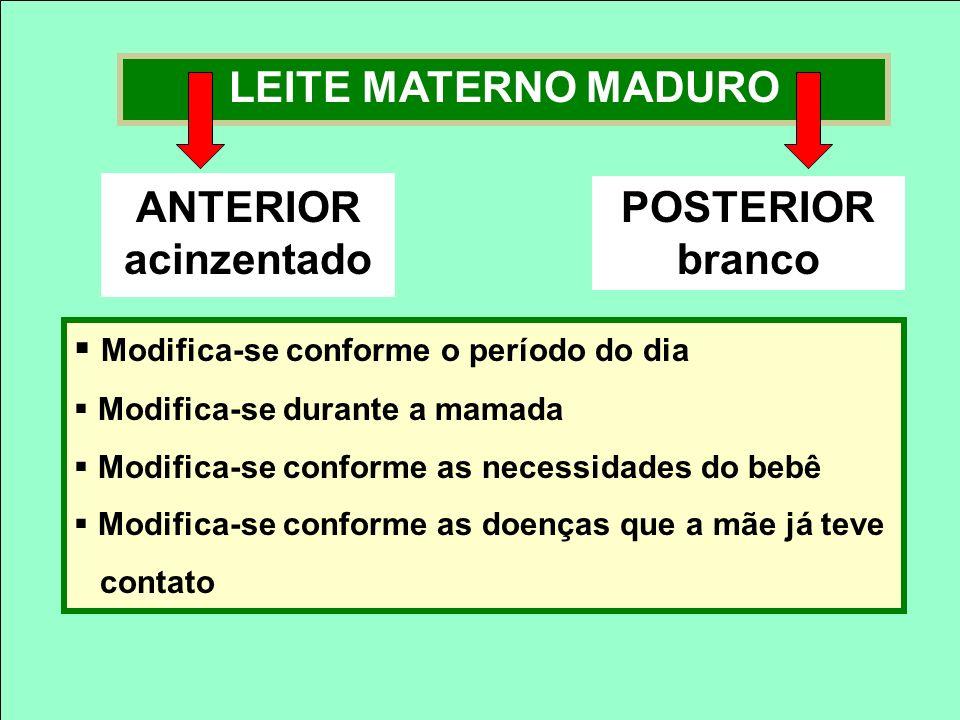 LEITE MATERNO MADURO ANTERIOR acinzentado POSTERIOR branco