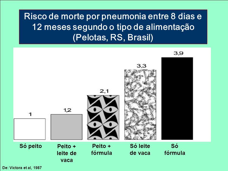 Risco de morte por pneumonia entre 8 dias e 12 meses segundo o tipo de alimentação (Pelotas, RS, Brasil)
