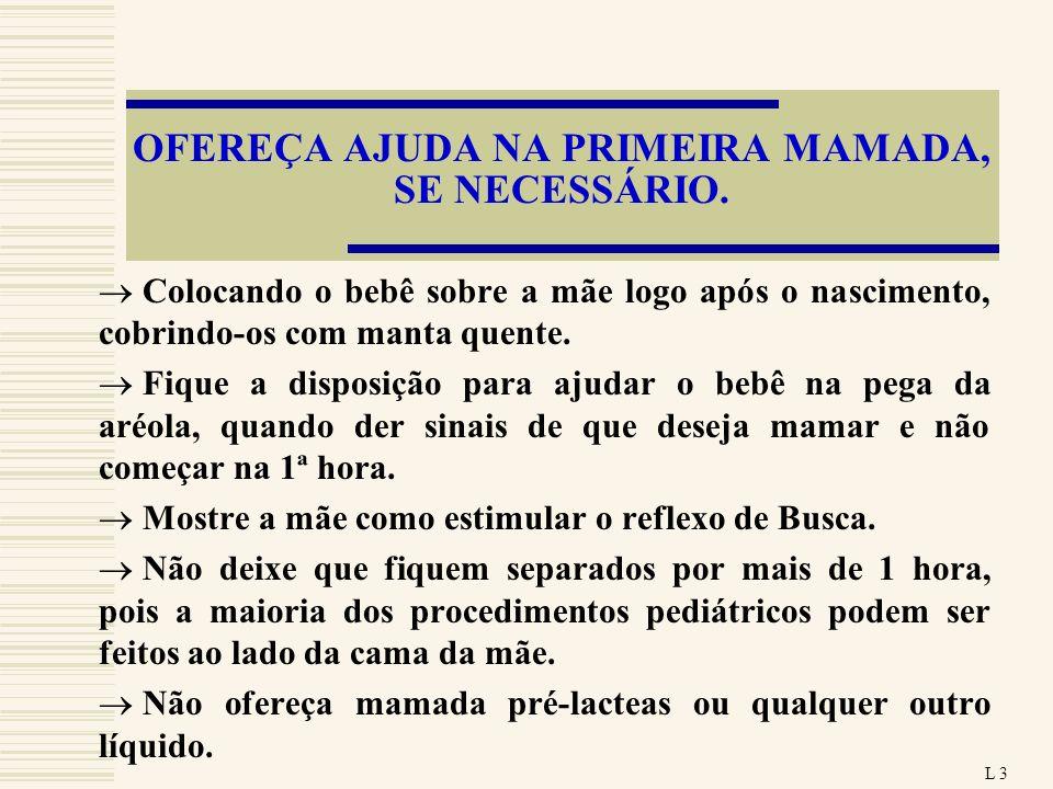 OFEREÇA AJUDA NA PRIMEIRA MAMADA, SE NECESSÁRIO.