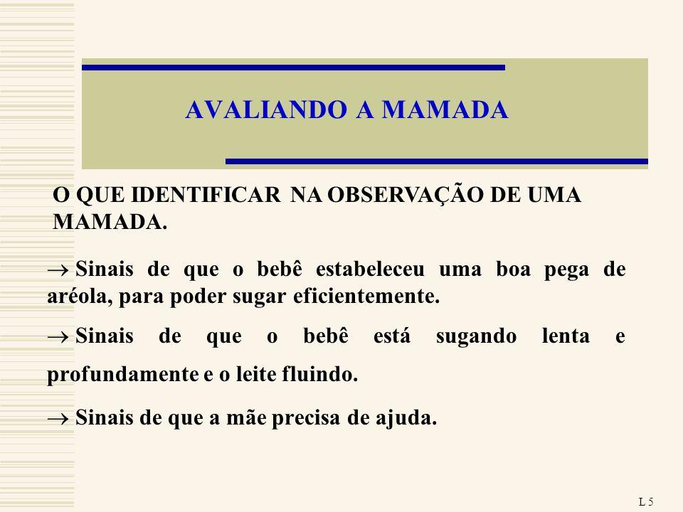 AVALIANDO A MAMADA O QUE IDENTIFICAR NA OBSERVAÇÃO DE UMA MAMADA.