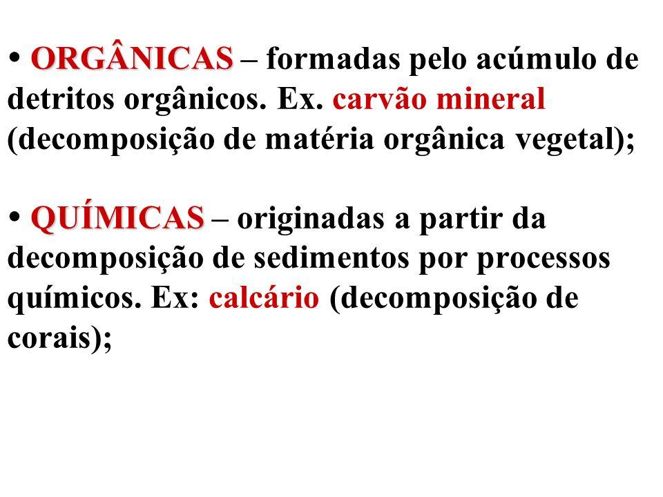  ORGÂNICAS – formadas pelo acúmulo de detritos orgânicos. Ex