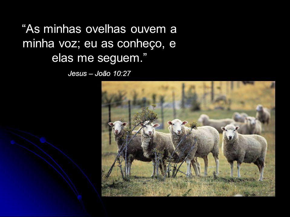 As minhas ovelhas ouvem a minha voz; eu as conheço, e elas me seguem