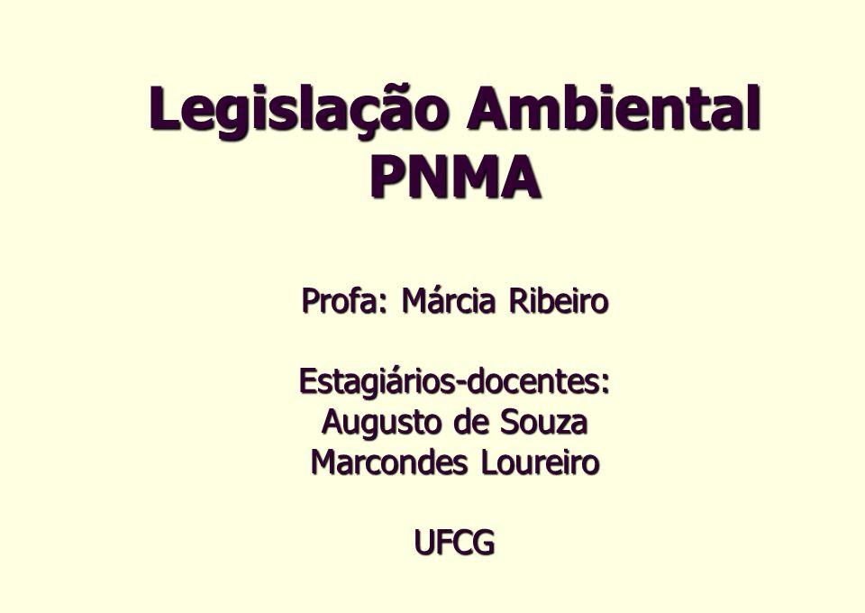 Legislação Ambiental PNMA Profa: Márcia Ribeiro Estagiários-docentes: Augusto de Souza Marcondes Loureiro UFCG