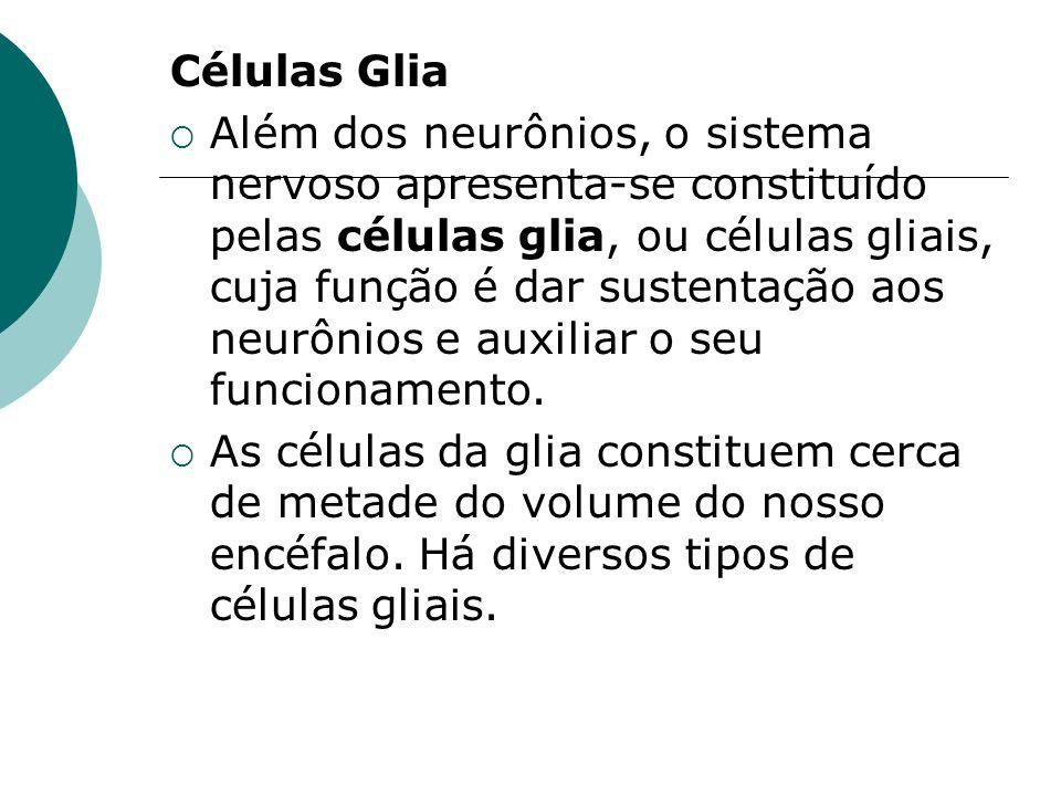 Células Glia
