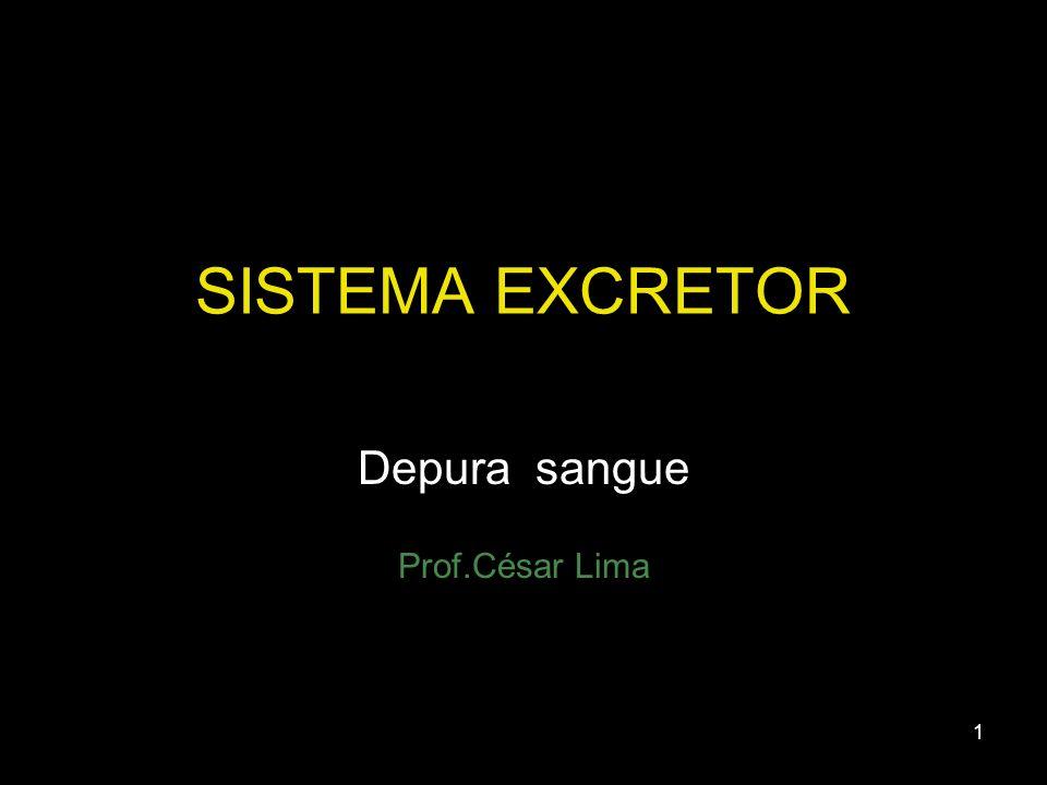 Depura sangue Prof.César Lima