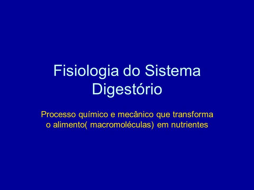 Fisiologia do Sistema Digestório