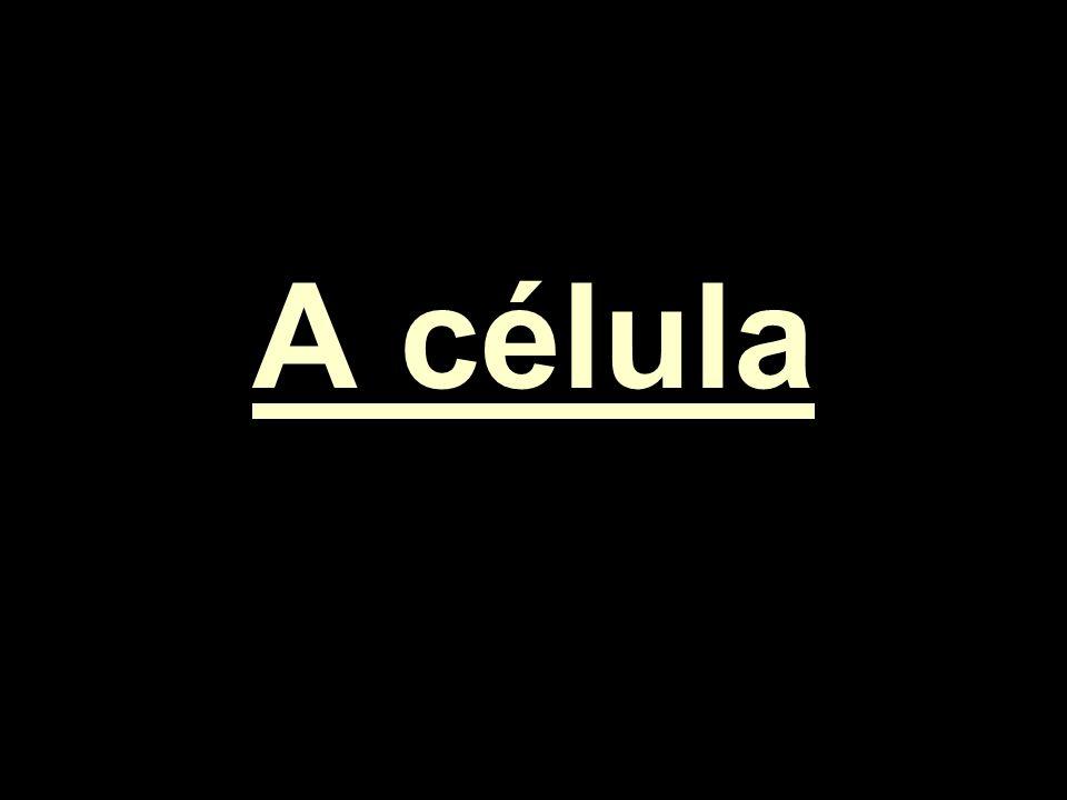 A célula